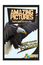 Amazing Pictures and Facts: Amazing Pictures and Facts about Eagles : The...