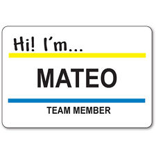 MATEO TEAM MEMBER BADGE & BUTTON HALLOWEEN COSTUME SUPERSTORE TV SHOW SAFETY PIN