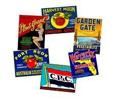 Fruit Crate Label Stickers Set, 6 Kitchen Decal REPRODUCTIONS, Vintage Label Art