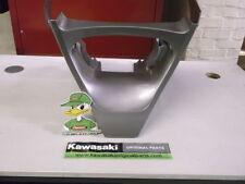 Carene, code e puntali in argento per moto Kawasaki