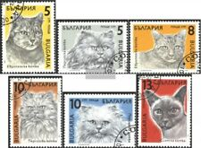 Bulgarien 3808-3813 (kompl.Ausg.) gestempelt 1989 Katzen