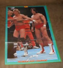 "WWE Ted DiBiase & Ricky Steamboat Pin Up 14.25"" x 10""  (From Japanese Magazine)"