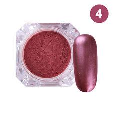 Matte Purple Nail Art Dust Powder Pigment Glitter Manicure Decoration Tips #4 2g