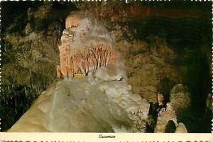 Caveman Rock Formation Carlsbad Caverns New Mexico pm 1979 Postcard