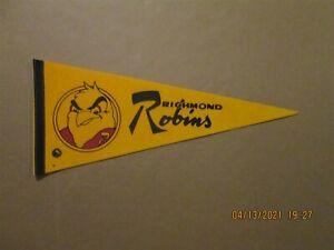 AHL Richmond Robins Vintage Defunct Circa 1971-72 Team Logo Hockey Pennant