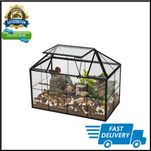 Ferrisland Glass Terrarium Flowers Case House Shape Display Box Planter for Succ