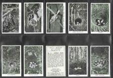 """R.S. CHALLIS 1935 ( WILD BIRDS ) FULL 36 CARD SET """"""""  WILD BIRDS AT HOME  """""""""""