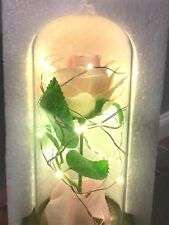 PINK Silk Rose and Led Light with Fallen Petals in a Glass Dome on a Wooden Base