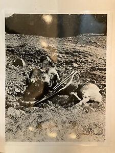 Fred Bear Bighorn sheep Signed print
