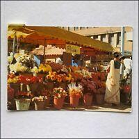 South Africa Durban Flower Market Postcard (P431)