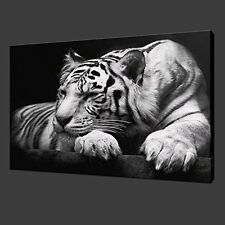 [Framed] White Tiger On Black Modern Picture Wall Art Canvas Prints Home Decor