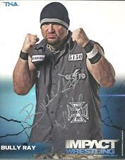 PS121  Bully Ray  signed wrestling 8x10 w/COA