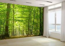 Deciduous Forest in Summer Wallpaper Mural Photo 12416663 budget paper