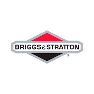 Briggs & Stratton Genuine 770434 BOARD-CIRCUIT Replacement Part