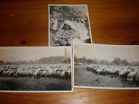 3 old photographs muslims at prayer Calcutta India 1935