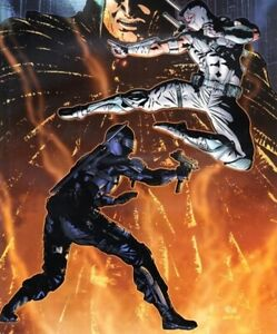 IDW Comics Gi Joe Snake Eyes Storm Shadow Issue No 19 Target Snake Eyes Nov 2012