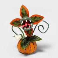 Hyde Eek Boutique Orange Creepy Decorative Halloween Faux Succulent Plant TARGET