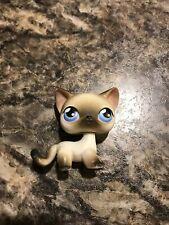Littlest Pet Shop Cat Siamese Shorthair Cat # 5 Authentic Blue Eyes