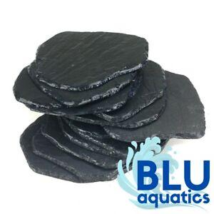 Flat SLATE Rock Pieces for Aquarium Fish Tank NATURAL Decoration Ornament