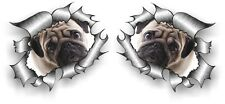 Pequeño Par STD Rip RASGADO RASGADO De Metal Y Lindo Pug Perro Cachorro Ojos Tristes Pegatina de Coche
