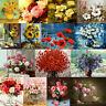Flower DIY Paint By Number Acrylic Oil Painting On Linen Art Wall Decor Scenery