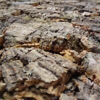 90x60 cm Kork Rückwand für´s Terrarium | Naturkork 3D KorkRückwand | XXL 900x600