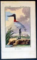 1770 Comte de Buffon Antique Ornithology Print - The Jabiru of South America