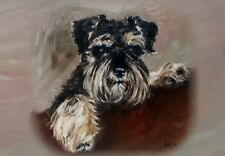 Miniature Schnauzer A6 Blank Card No 15 By Starprint