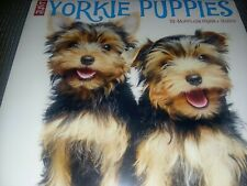 New Just Yorkie Puppies 2020 Wall Calendar by Willow Creek Press Free Shipping