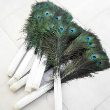 10Pcs Natural Peacock Tail Feathers Handmade Craft Home Decorations Supplies