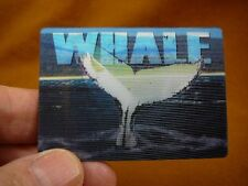 MAG-3) 3D Frig MAGNET refrigerator 2 in 1 photo Whales jumping tails ocean whale