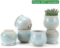 Small Ceramic Succulent Planter Pots with Drainage Hole Set of 6, Sagging Glazed