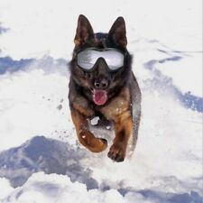 Dog Sunglasses UV Protection Windproof Goggles Medium Large Pet Eye Wear Glasses