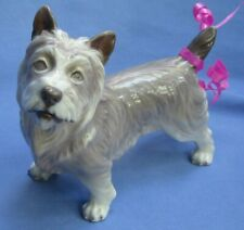 "Cairn Norwich Terrier Dahl Jensen Denmark Dog 6"""