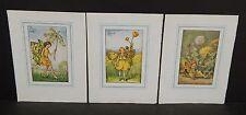Flower Fairies Cicely M. Barker 3 Prints  c1940 G1#31