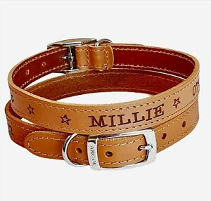 Leather dog collar puppy name & number engraved Personalised custom FREE STICKER