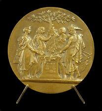 Médaille coloniale Afrique & Océanie représentées Salzmann sc Depaulis Medal