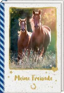 Freundebuch - Pferdefreunde - Meine Freunde. Galoppierende Pferde (2018, Gebunde
