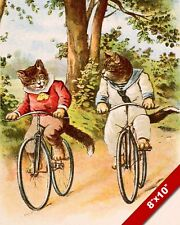 CATS RIDING BIKES IN THE PARK KITTEN PET ANIMAL ART PAINTING REAL CANVAS PRINT