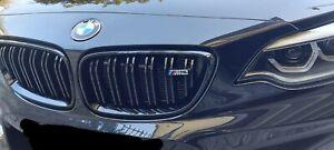 BMW Serie 2 F22 F23 F87 M2 Griglia Anteriore Performance nero lucido con logo M2