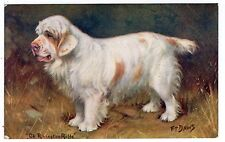 CLUMBER SPANIEL NAMED CHAMPION OLD SPRATTS DOG FOOD POSTCARD by F T DAWS