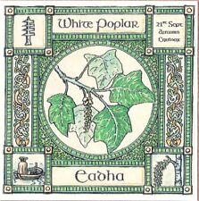 Equinozio di autunno bianco pioppo ALBERO XXI settembre celtica pagane COMPLEANNO OGHAM wiccan