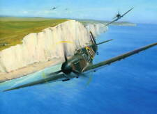 RAF Fighter Command Spitfire WW2 Battle of Britain 75th White Cliffs of Dover