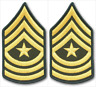 2 Pair Army Sergeant Major E-9 Rank Gold on Green Chevron Patches - Male