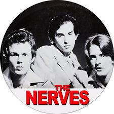 CHAPA/BADGE THE NERVES . paul collins beat peter case plimsouls stems power pop