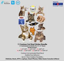 "12"" x 9"" Cats & Kitties Contour Cut Vehicle Decal Bundle"