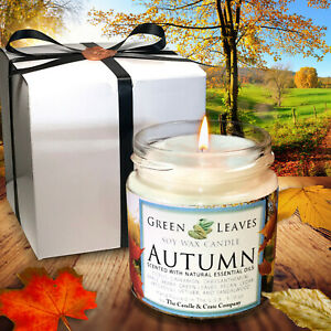 Soy Candle, Autumn Scented, Handmade, 4oz., AMAZING FALL FRAGRANCE!