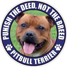 """PITBULL TERRIER PUNISH THE DEED NOT THE BREED 4"""" DOG PIT BULL PHOTO STICKER"""