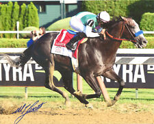 "Arrogate Travers Stakes 8"" x 10""  Photo Signed Mike Smith New!"