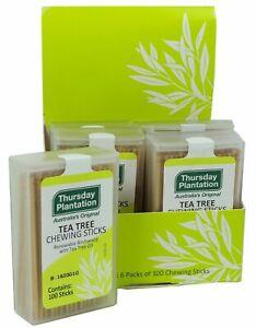 THURSDAY PLANTATION TEA TREE  CINNAMON TOOTHPICKS  100 STICKS